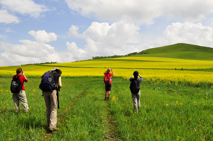 Beautiful landscape, Beijing Hikers Hailar, July014, 2011